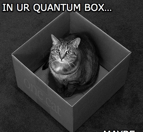 quantum measurement problem